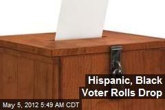Hispanic, Black Voter Rolls Drop