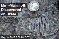 Mini-Mammoth Discovered on Crete