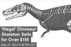'Illegal' Dinosaur Skeleton Sells for Over $1M