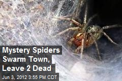 Mystery Spiders Swarm Town, Leave 2 Dead