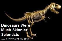 Dinosaurs Were Much Skinnier: Scientists