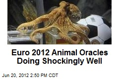 Euro 2012 Animal Oracles Doing Shockingly Well