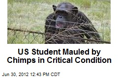 US Student Mauled by Chimps in Critical Condition