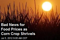 Bad News for Food Prices as Corn Crop Shrivels