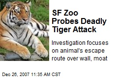 SF Zoo Probes Deadly Tiger Attack