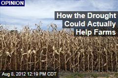 How the Drought Could Actually Help Farms