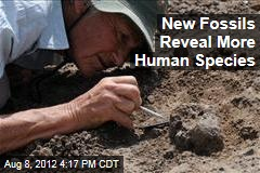 New Fossils Reveal More Human Species