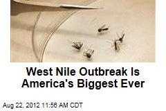 West Nile Outbreak Is America's Biggest Ever