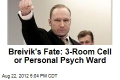 Breivik's Fate: 3-Room Cell or Personal Psych Ward