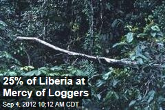 25% of Liberia at Mercy of Loggers