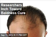 Researchers Inch Toward Baldness Cure