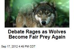 Debate Rages as Wolves Become Fair Prey Again