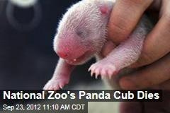 National Zoo's Panda Cub Dies