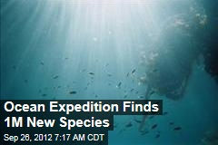 Ocean Expedition Finds 1M New Species