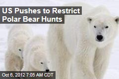 US Pushes to Restrict Polar Bear Hunts
