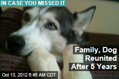 Family, Dog Reunited After 5 Years