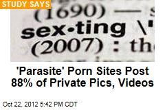 'Parasite' Porn Sites Post 88% of Private Pics, Videos