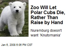 Zoo Will Let Polar Cubs Die, Rather Than Raise by Hand