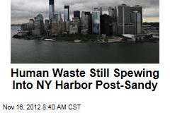 Human Waste Still Spewing Into NY Harbor Post-Sandy