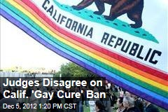 Judges Disagree on Calif. 'Gay Cure' Ban