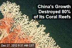 China's Growth Destroyed 80% of Its Coral Reefs