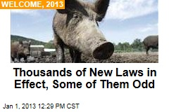 Thousands of New Laws in Effect, Some of Them Odd