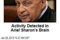Activity Detected in Ariel Sharon's Brain