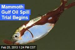 Mammoth Gulf Oil Spill Trial Begins