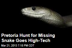 Pretoria Hunt for Missing Snake Goes High-Tech