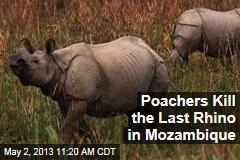 Poachers Kill the Last Rhino in Mozambique