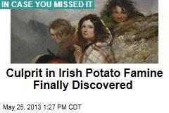 Culprit in Irish Potato Famine Finally Discovered