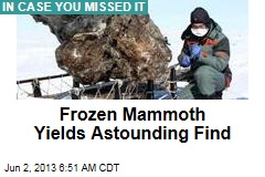 Frozen Mammoth Yields Astounding Find