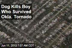 Dog Kills Boy Who Survived Tornado