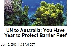 UN to Australia: You Have Year to Protect Barrier Reef