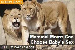 Mammal Moms Can Choose Baby's Sex