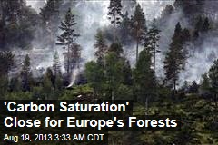 'Carbon Saturation' Close for Europe's Forests