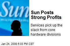 Sun Posts Strong Profits