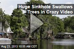 Huge Sinkhole Swallows Trees in Crazy Video