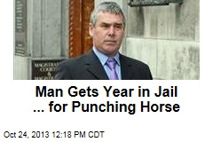 Soccer Fan Gets Year in Jail ... for Punching Horse