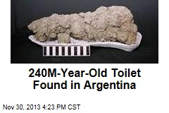 World's Oldest Outhouse Dug Up in Argentina