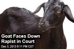 Goat Faces Down Rapist in Court