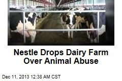 Nestle Drops Dairy Farm Over Animal Abuse