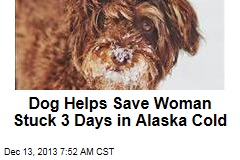 Dog Helps Save Woman Stuck 3 Days in Alaska Cold