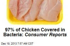 97% of Chicken Covered in Bacteria: Consumer Reports