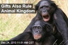 Gifts Also Rule Animal Kingdom