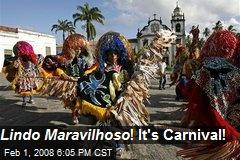 Lindo Maravilhoso ! It's Carnival!