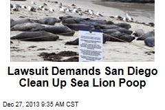 Lawsuit Demands San Diego Clean Up Sea Lion Poop
