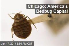 Chicago: America's Bedbug Capital