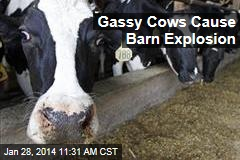 Gassy Cows Cause Barn Explosion