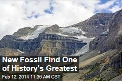 New Fossil Find One of History's Greatest